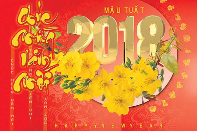 Việt Nam vững bước tiến vào năm 2018